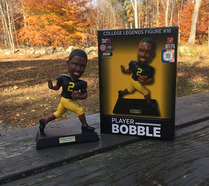 "Bobble of the Day ""Charles Woodson"""