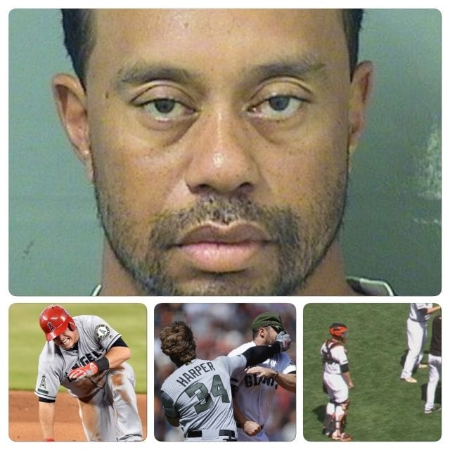Weekend Recap Tiger arrested/Trout on DL/Harper gets hit/Posey stands there